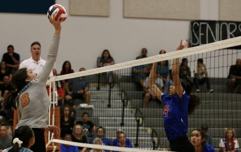 Americas Trailblazers Defeat the Spartans in Four Sets